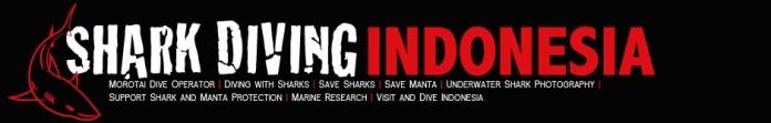 Shark Diving Indonesia Morotai