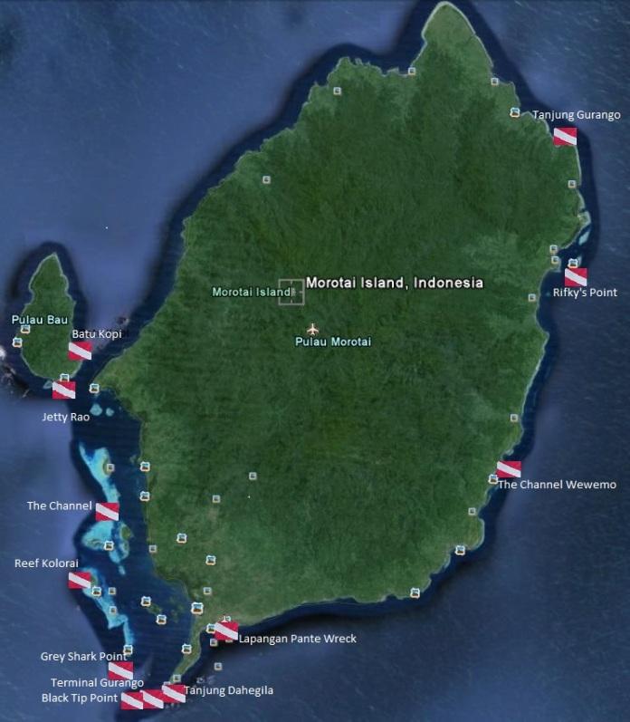 Dive Site Shark Diving Indonesia Morotai